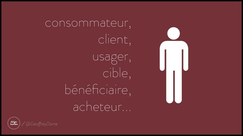 consommateur, client, usager, cible, bénéficiai...