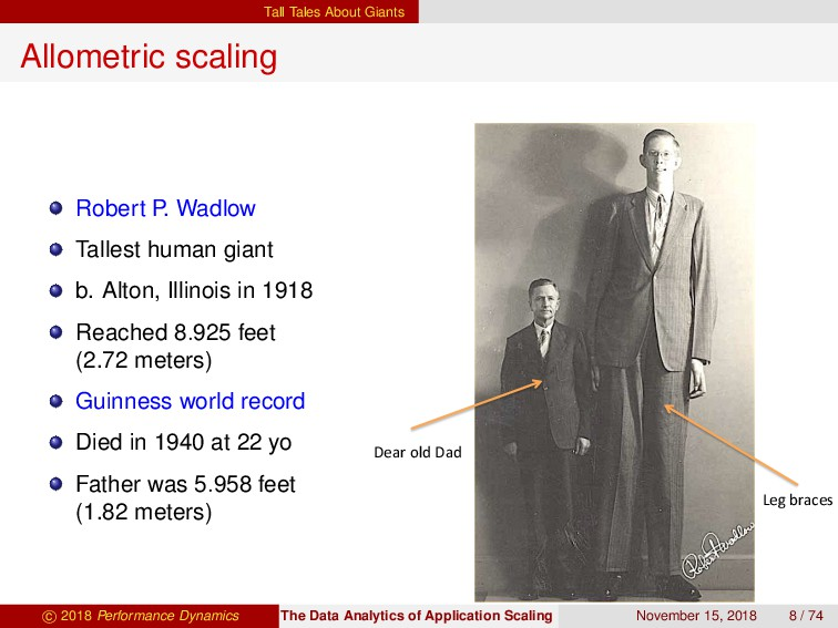 Tall Tales About Giants Allometric scaling Robe...