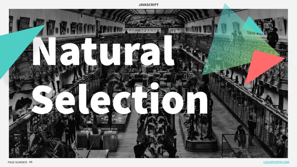 PAGE NUMBER 40 Natural Selection LUCASFCOSTA.CO...
