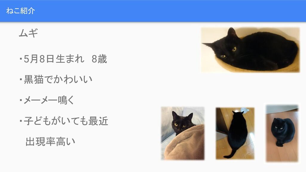 ねこ紹介 ムギ ・5月8日生まれ 8歳 ・黒猫でかわいい ・メーメー鳴く ・子どもがいても最近...