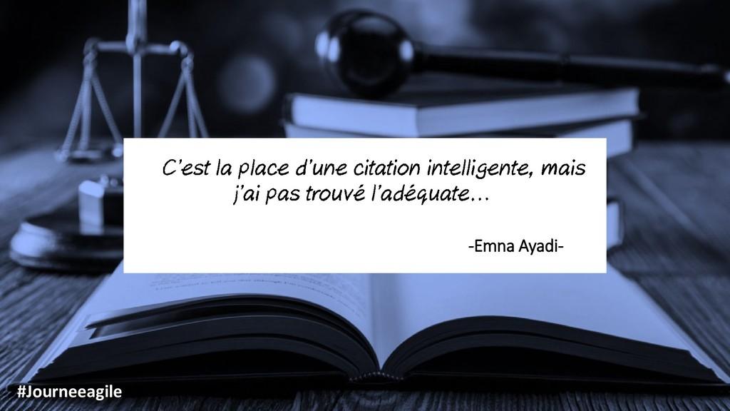 -Emna Ayadi- #Journeeagile