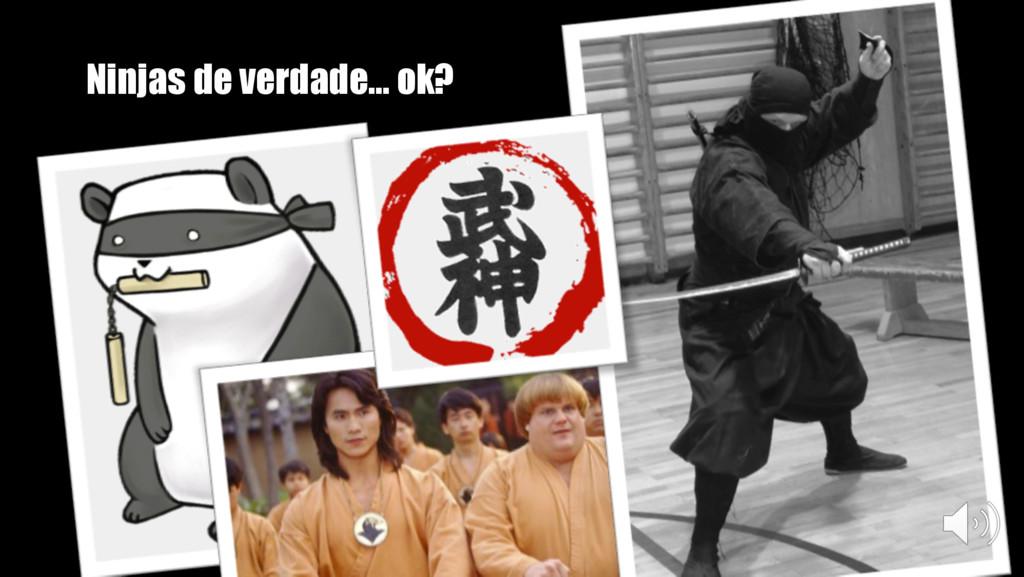Ninjas de verdade… ok?