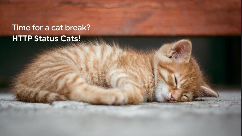 Proprietary + Confidential Time for a cat break...