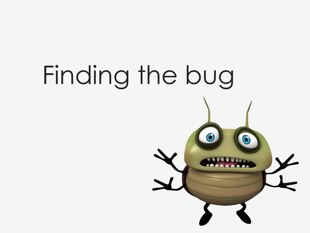 Finding the bug