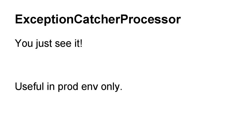 ExceptionCatcherProcessor You just see it! Usef...