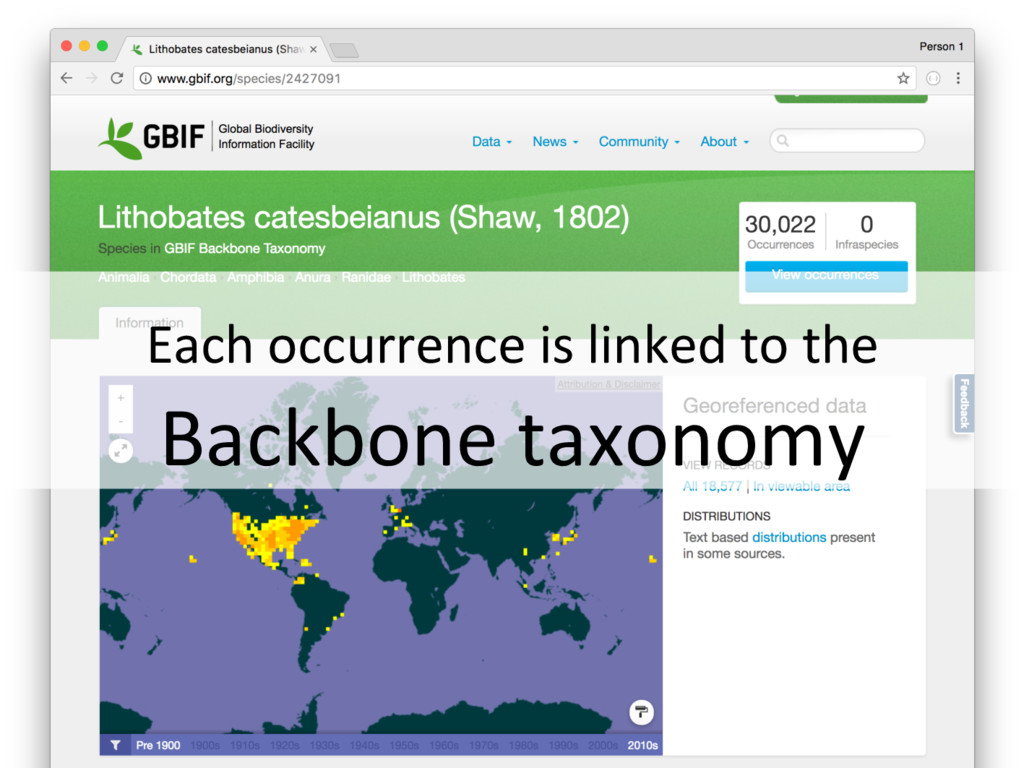 Each occurrence is linked to the Backbone taxon...