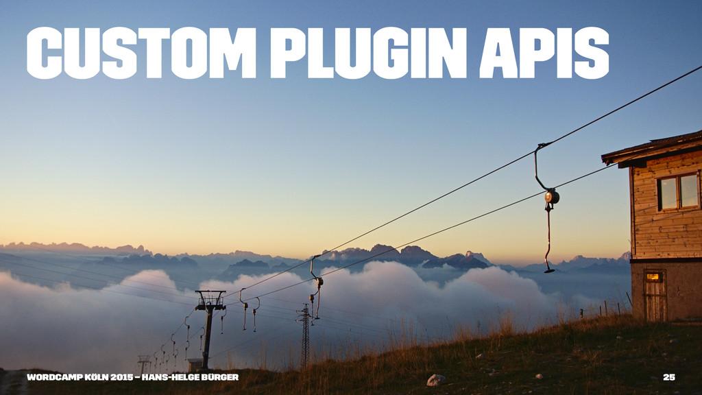 Custom Plugin APIs WordCamp Köln 2015 – Hans-He...