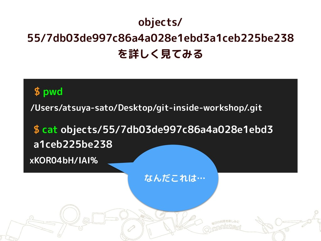 objects/ 55/7db03de997c86a4a028e1ebd3a1ceb225be...