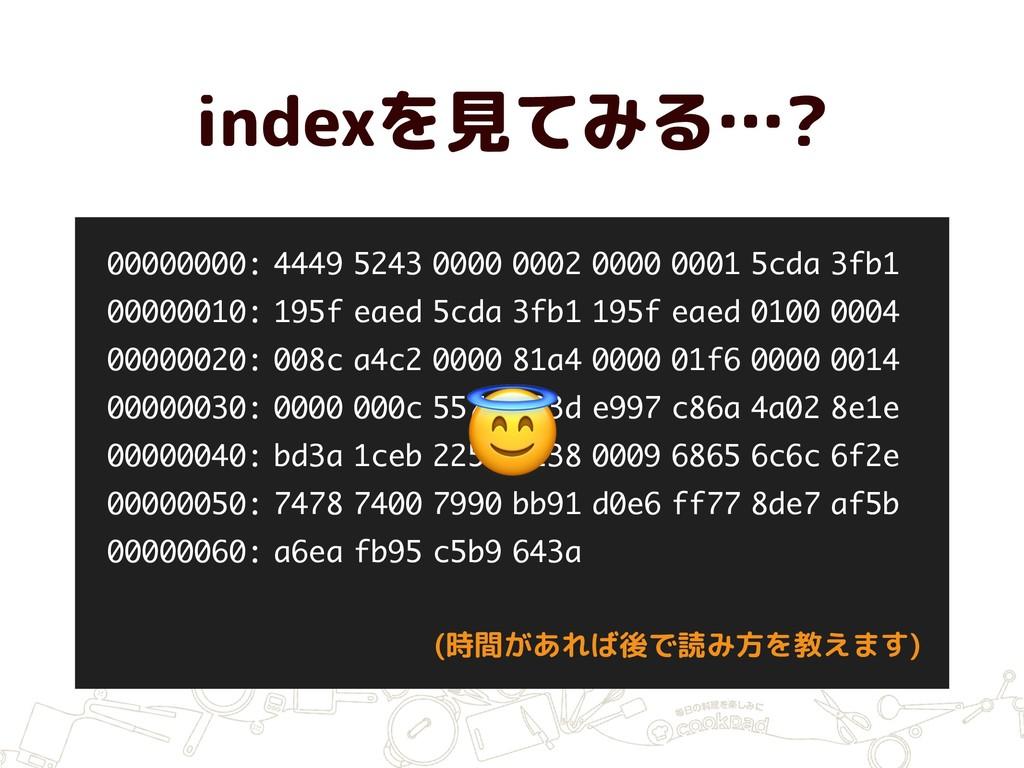 indexを見てみる…? 00000000: 4449 5243 0000 0002 0000...