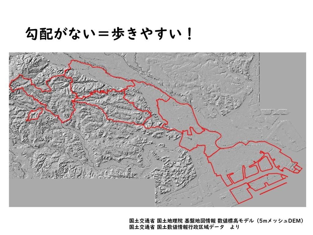 勾配がない=歩きやすい! 国土交通省 国土地理院 基盤地図情報 数値標高モデル(5mメッシュD...