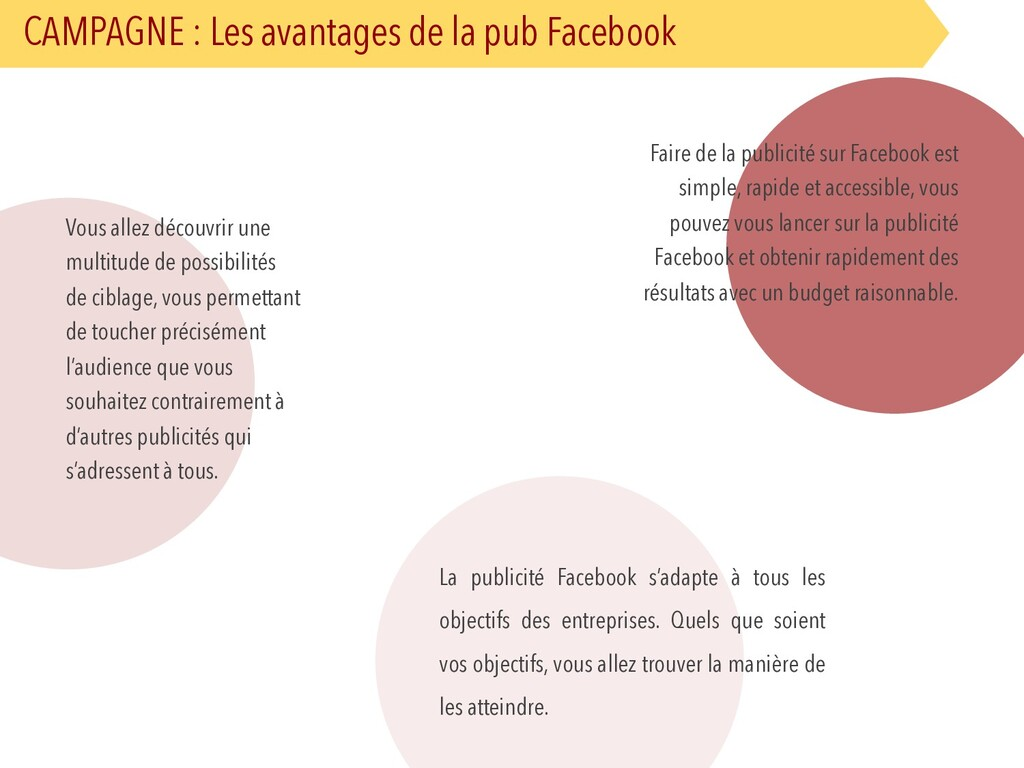 CAMPAGNE : Les avantages de la pub Facebook Fai...