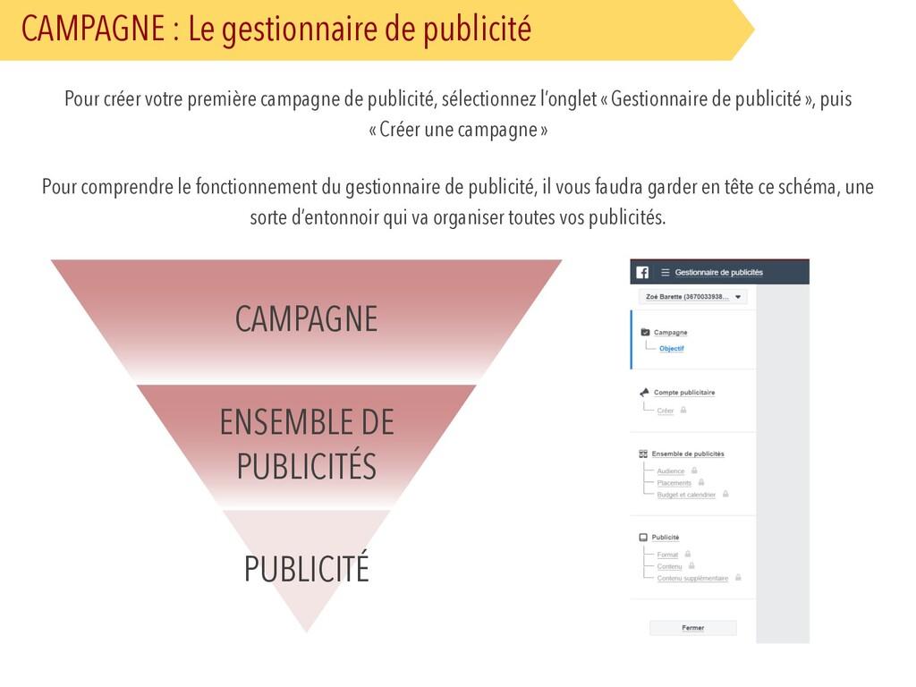 CAMPAGNE : Le gestionnaire de publicité Pour cr...