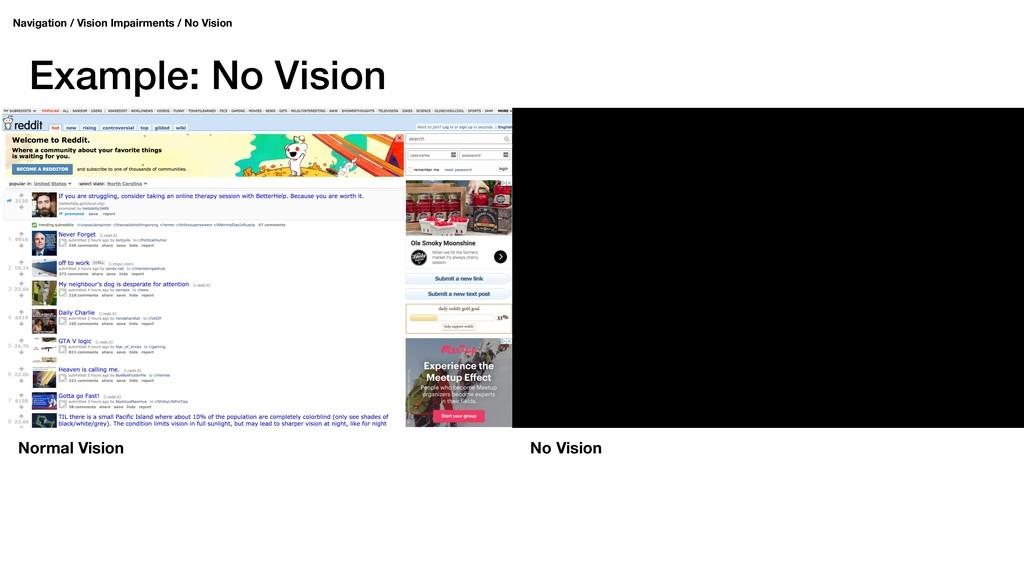 Example: No Vision Navigation / Vision Impairme...