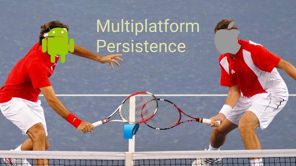 Multiplatform Persistence