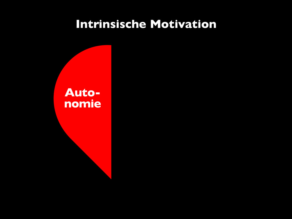 Auto- nomie Intrinsische Motivation