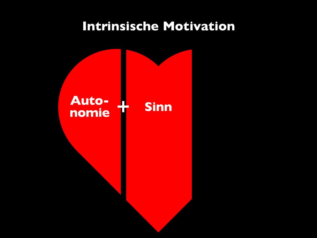 Auto- nomie Sinn Intrinsische Motivation