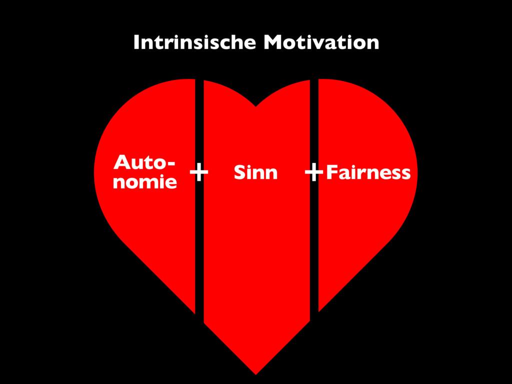 Auto- nomie Sinn Fairness Intrinsische Motivati...