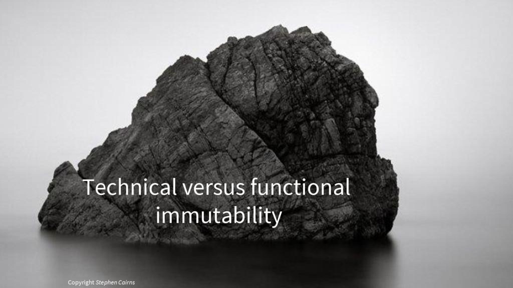 Copyright Stephen Cairns Technical versus funct...