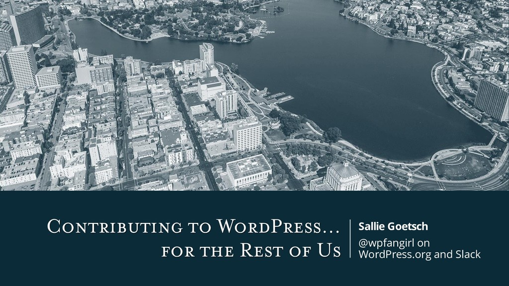 Contributing to WordPress… for the Rest of Us S...