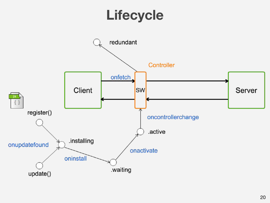 Lifecycle 20