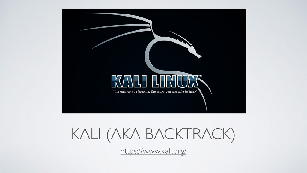 KALI (AKA BACKTRACK) https://www.kali.org/