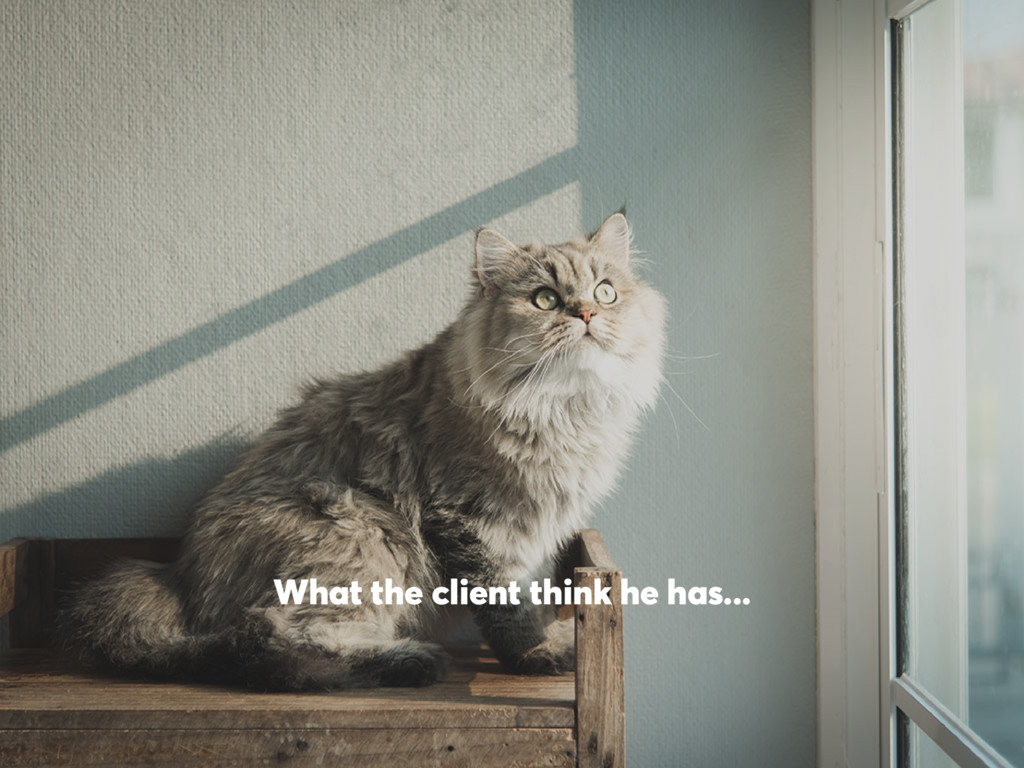 What the client think he has...