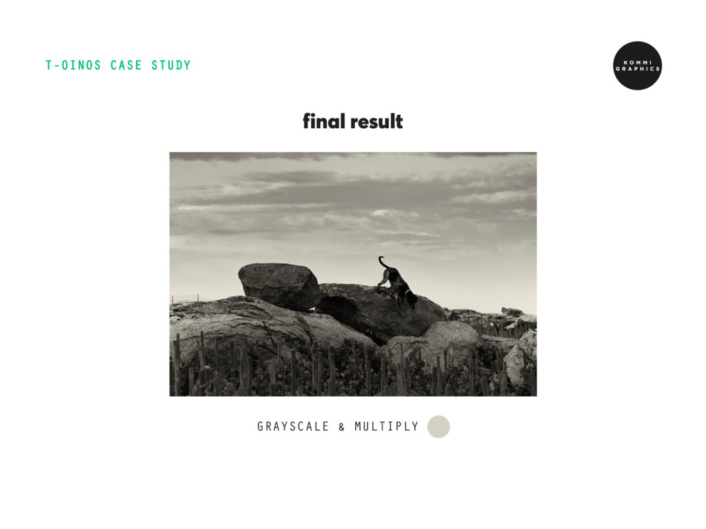 T-OINOS CASE STUDY GRAYSCALE & MULTIPLY final r...