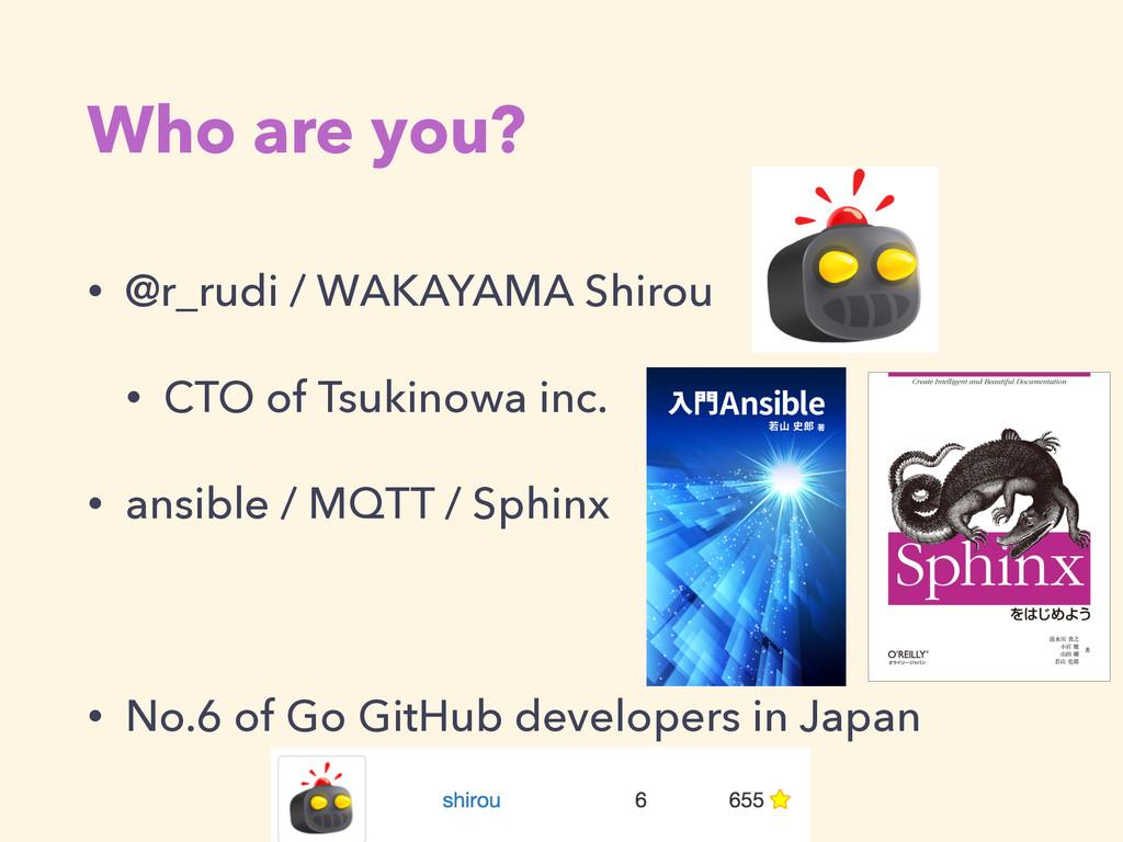 Who are you? • @r_rudi / WAKAYAMA Shirou • CTO ...