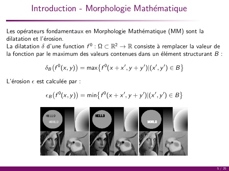 Introduction - Morphologie Math´ ematique Les o...