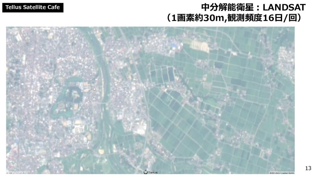 Tellus Satellite Cafe 中分解能衛星:LANDSAT (1画素約30m,観...