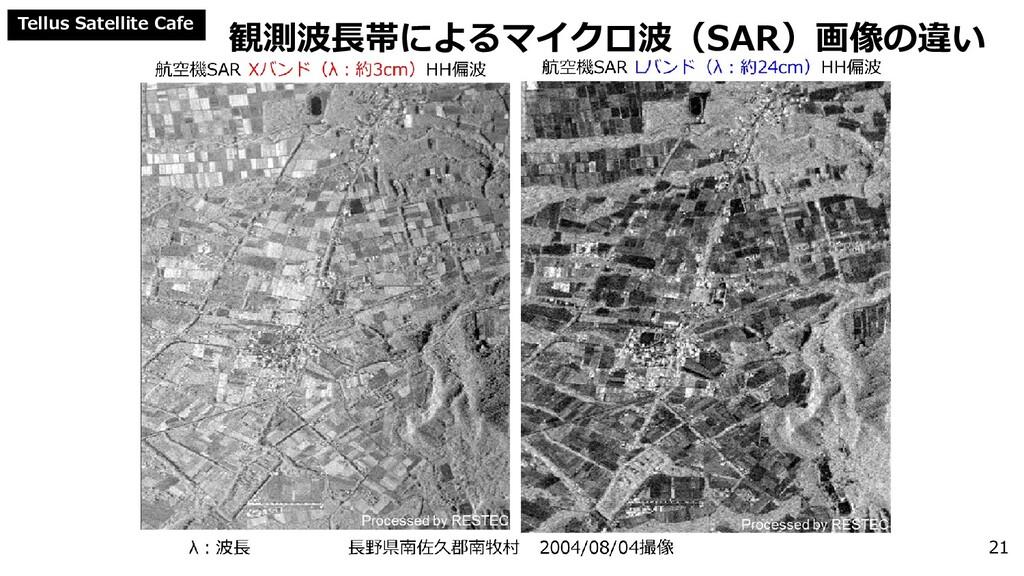 Tellus Satellite Cafe 観測波長帯によるマイクロ波(SAR)画像の違い 21