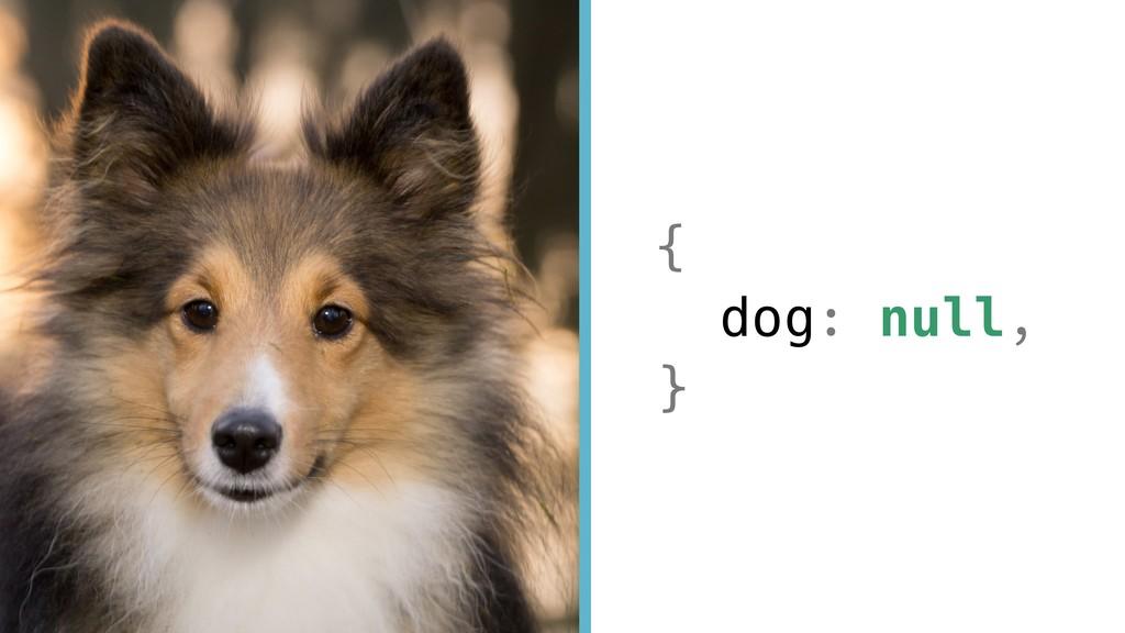 { dog: null, }