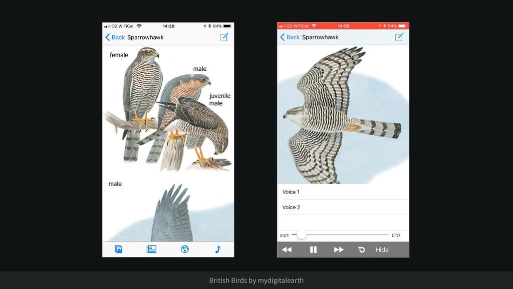 British Birds by mydigitalearth