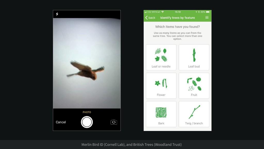Merlin Bird ID (Cornell Lab), and British Trees...