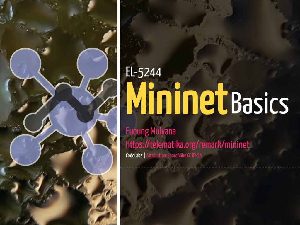 1 / 61 EL-5244 Mininet Basics Eueung Mulyana ht...