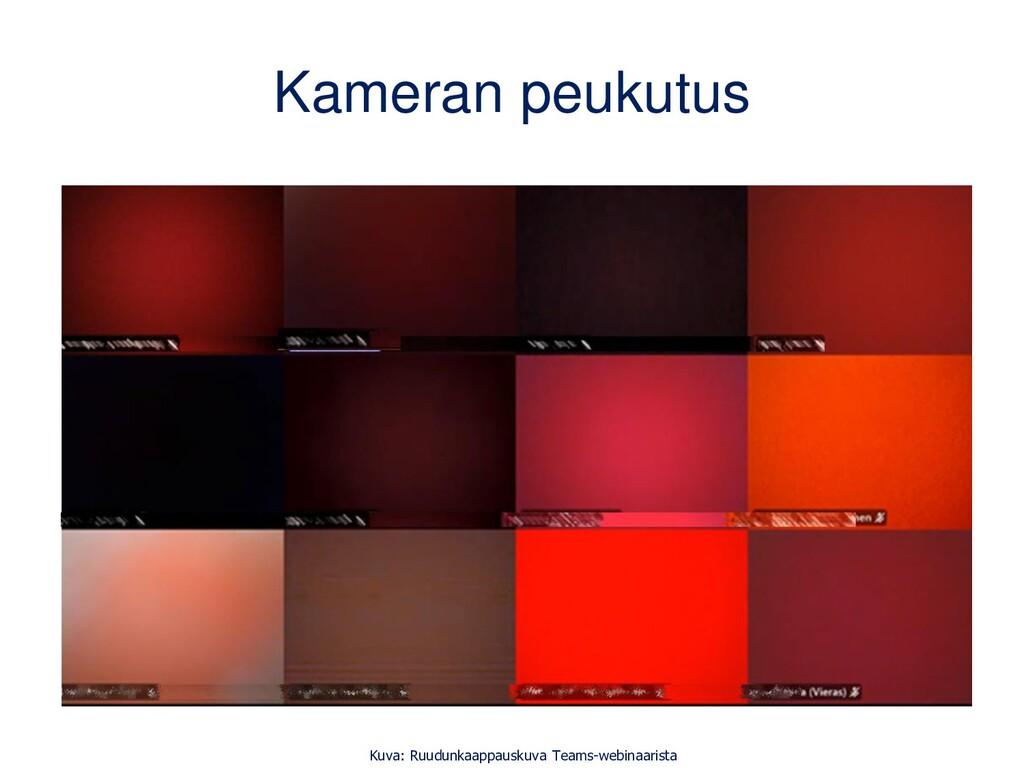 Kameran peukutus Kuva: Ruudunkaappauskuva Teams...