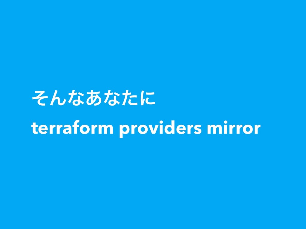 ͦΜͳ͋ͳͨʹ terraform providers mirror