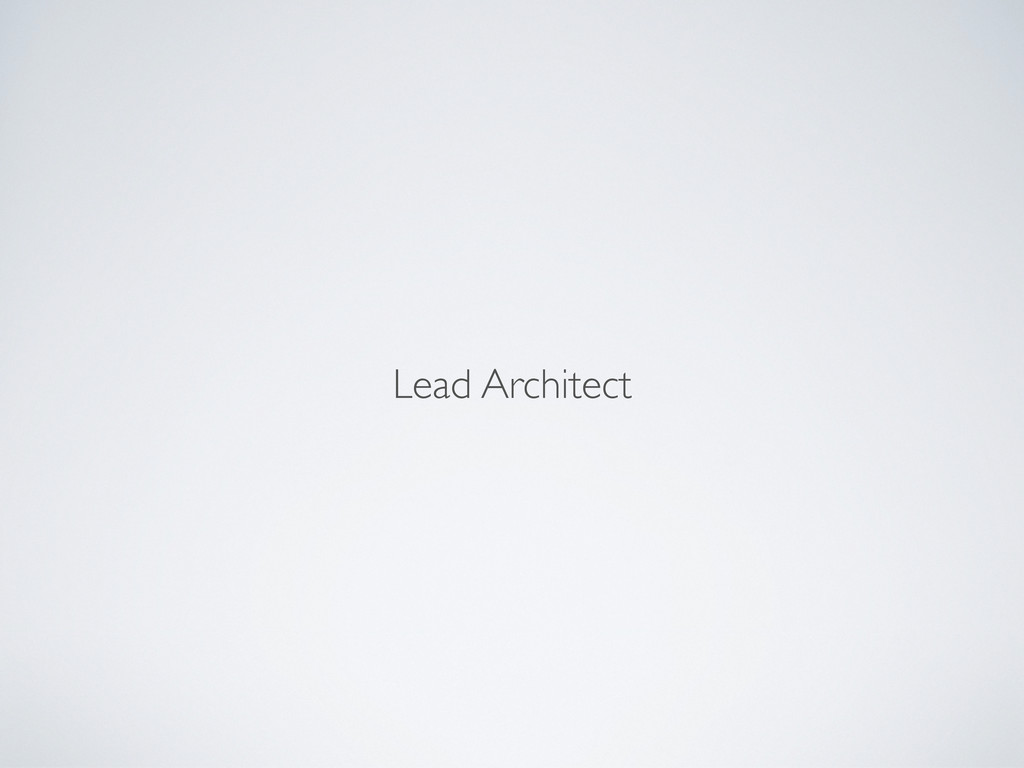 Lead Architect