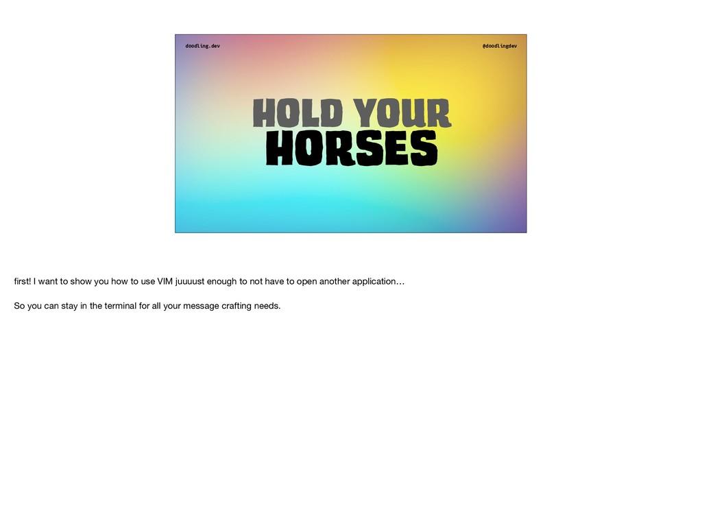 doodling.dev @doodlingdev Hold your Horses first...