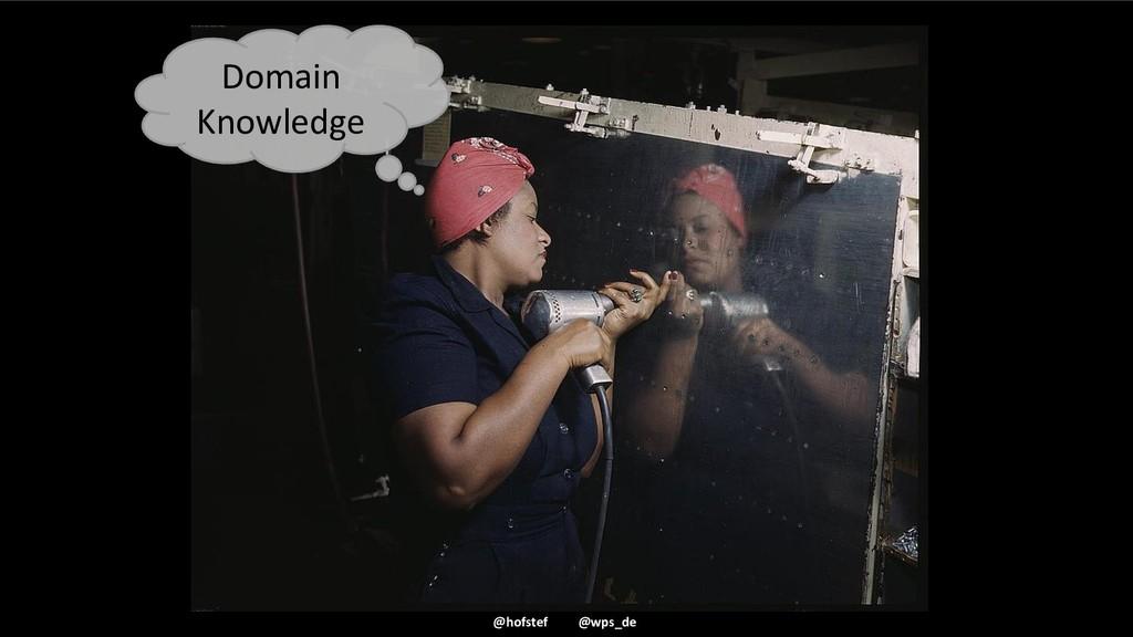 @hofstef @wps_de Domain Knowledge
