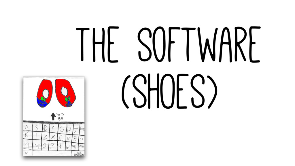 The Software (SHOES)