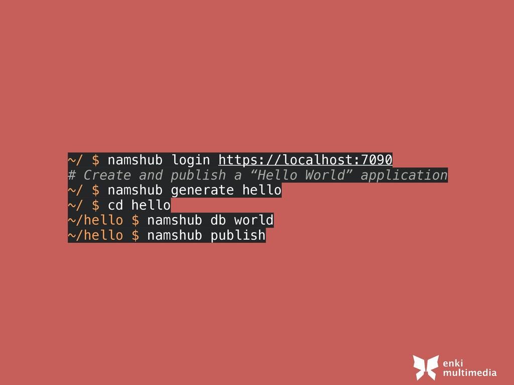 ~/ $ namshub login https://localhost:7090   # C...