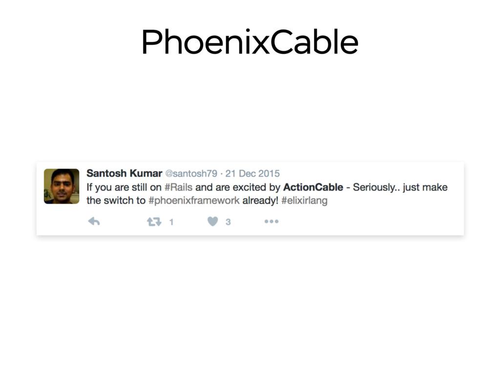 PhoenixCable