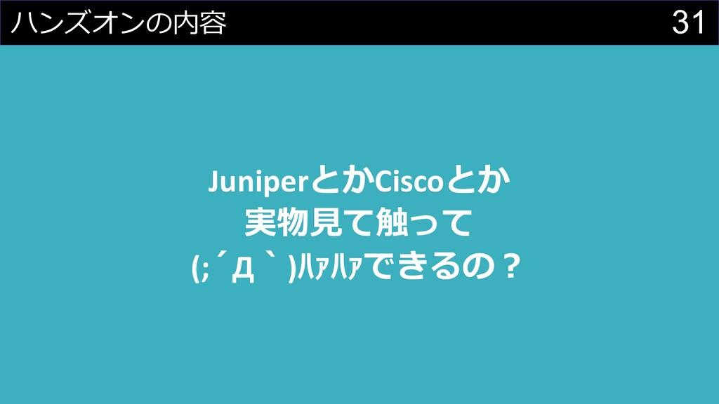 31  JuniperCisco     (;Д)...