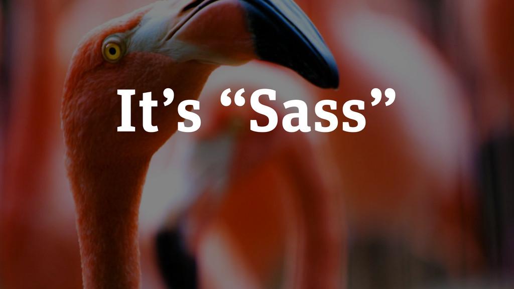 """It's """"Sass"""""""