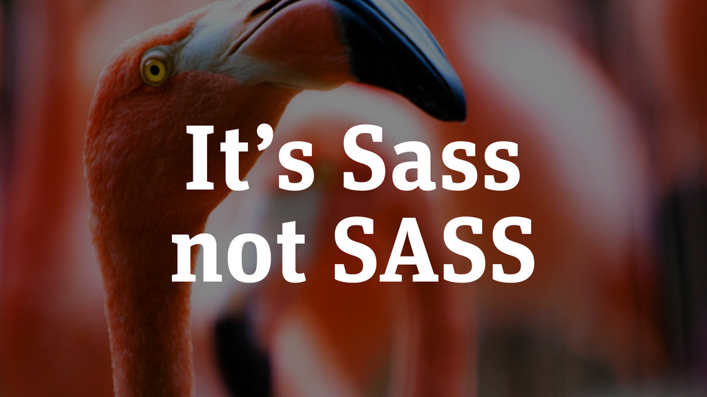 It's Sass not SASS