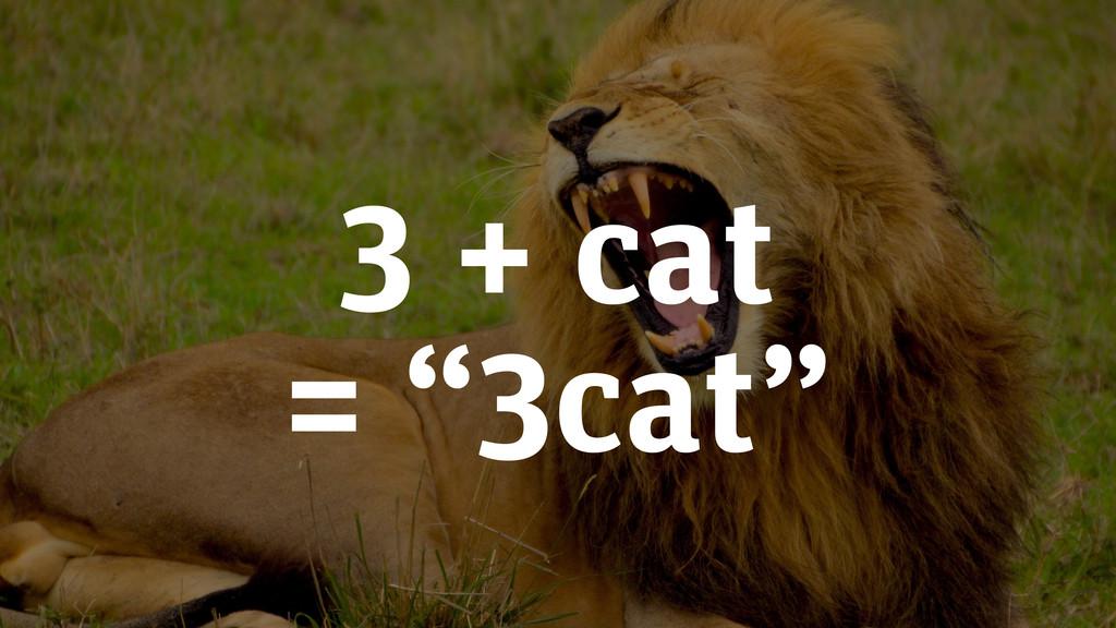 """3 + cat = """"3cat"""""""