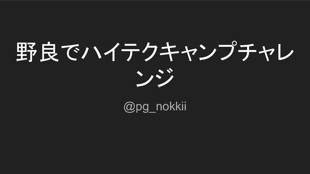 野良でハイテクキャンプチャレ ンジ @pg_nokkii