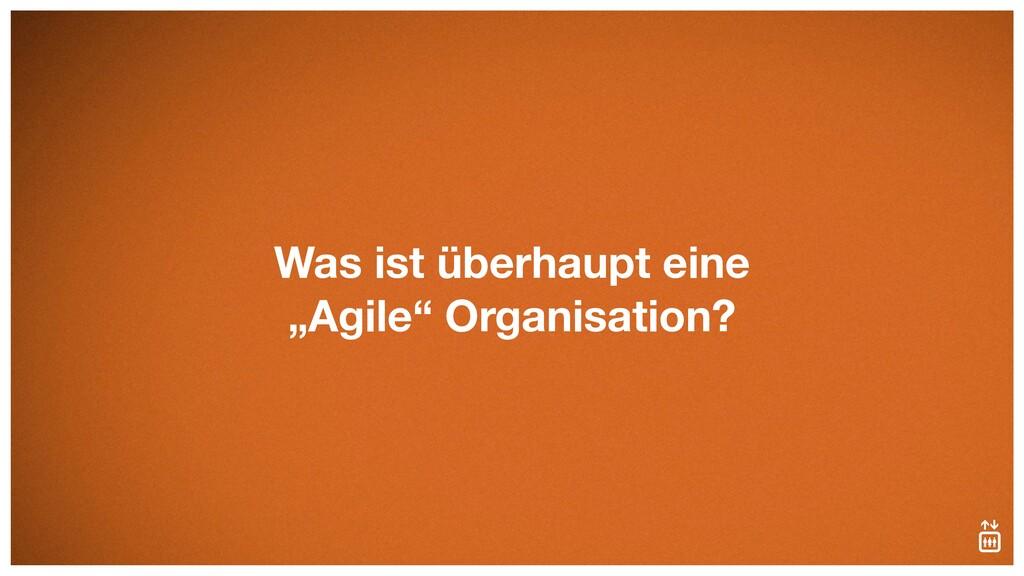 """Was ist überhaupt eine """"Agile"""" Organisation?"""