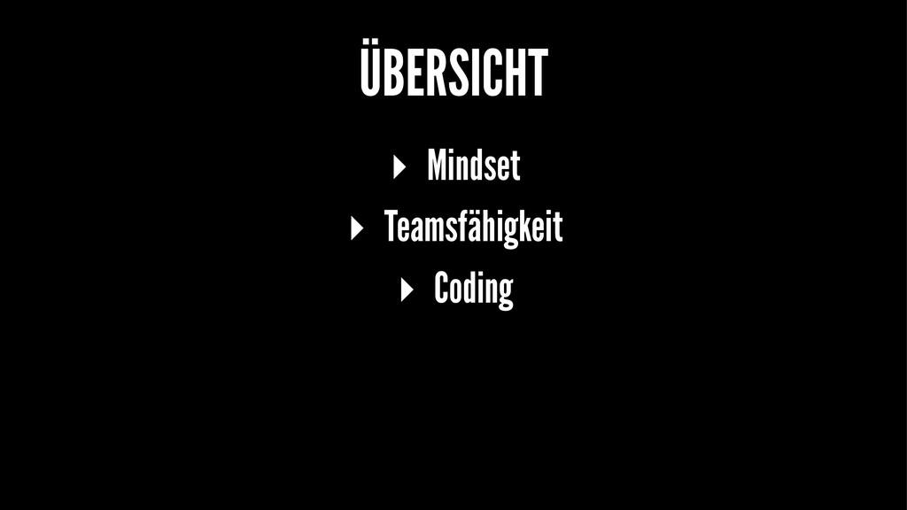 ÜBERSICHT ▸ Mindset ▸ Teamsfähigkeit ▸ Coding